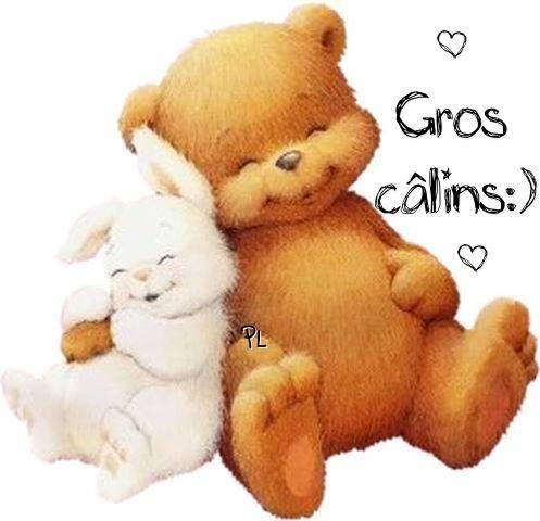 calins_014-1494944523.jpg