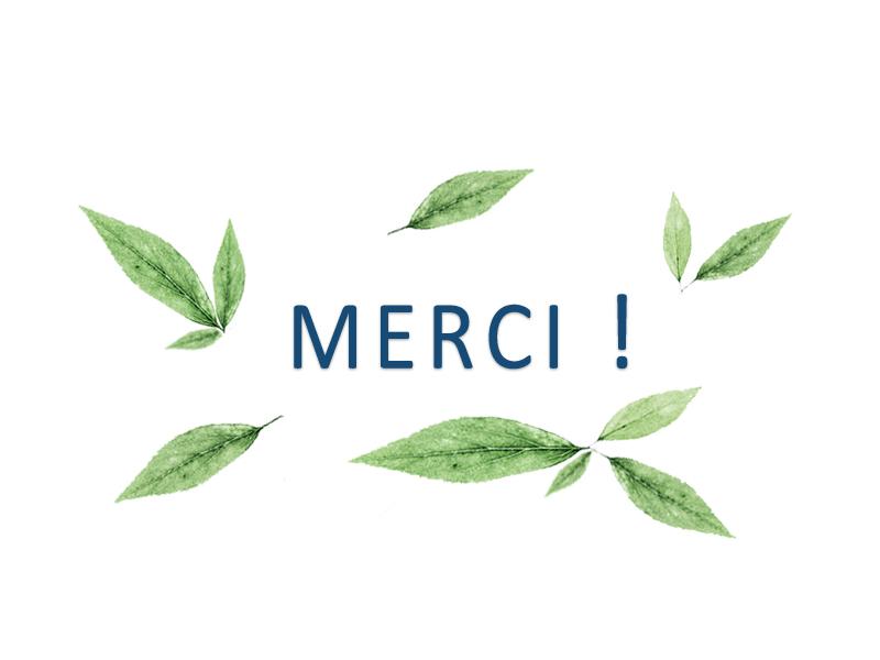 10__Merci-1496848999.jpg
