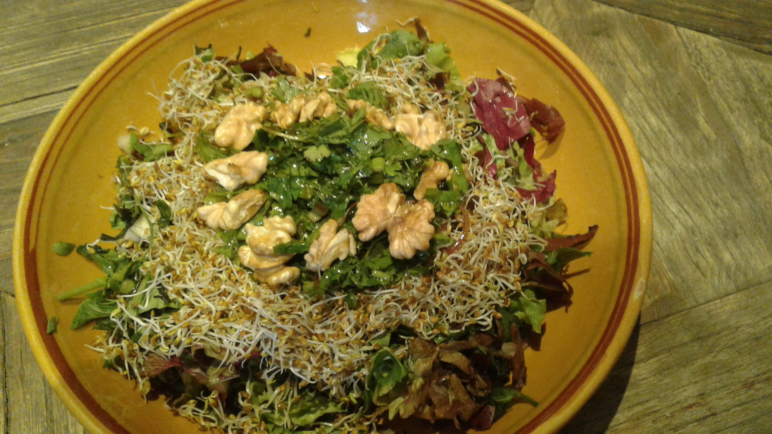 Salade_Ayurvedique-1502704099.jpg
