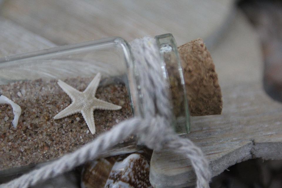starfish-2506856_960_720-1505728496.jpg