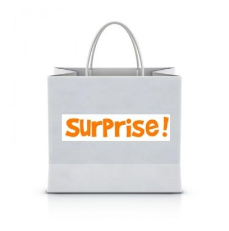 sac_surprise_1-1506094908.jpg