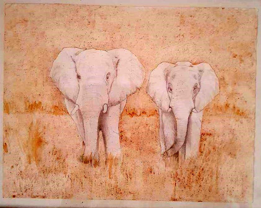 elephants-1506525266.jpg