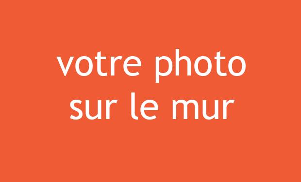 photomur-1508439511.jpg