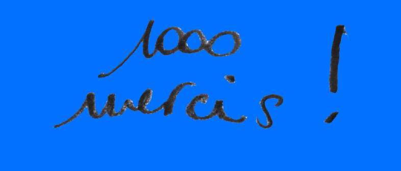1000_mercis-1509468759.jpg