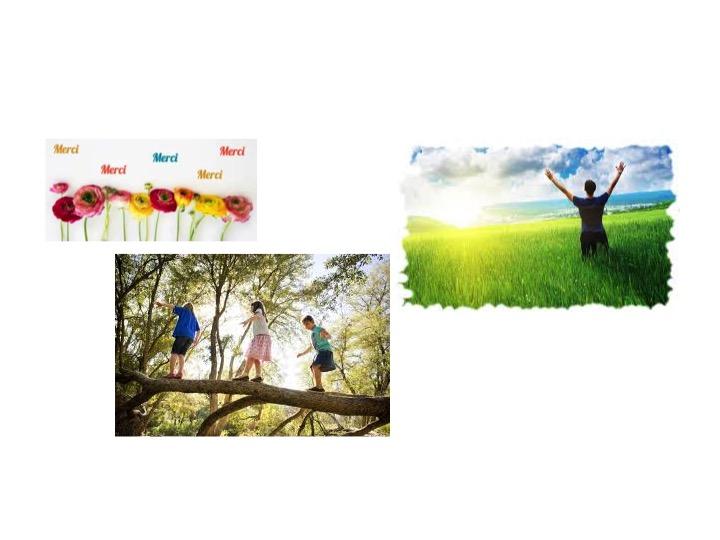 150__atelier_nature_ou_coaching_vitalite-1509878595.jpg