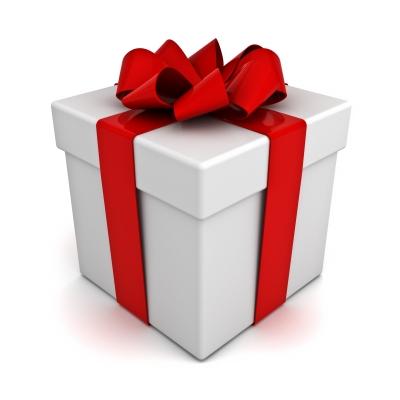 Cadeau-newsletter-Vivez-bloguez-1510771279.jpg