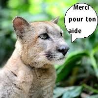puma_merci_pour_ton_aide-1511875893.jpg