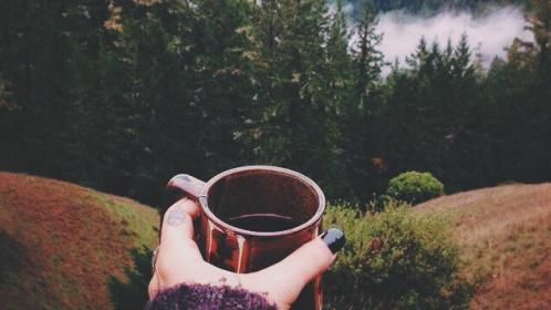 Coffee_wild-1515763376.jpg