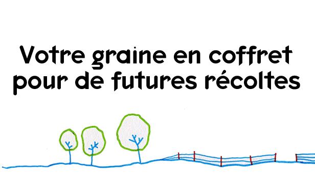 votre_graine_en_coffret-1516032709-1516099536.jpg