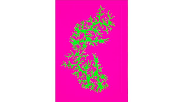 fractal_coraux_2-1517386741.png