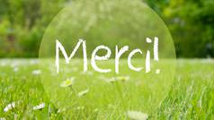 merci-1518948668.jpg