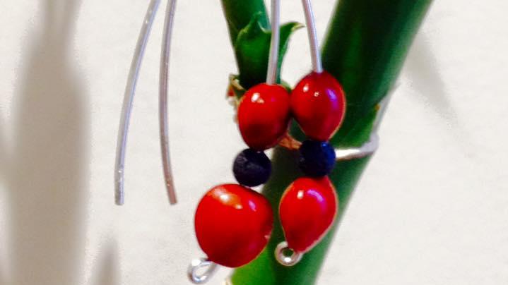 red_seeds-1520374037.jpg