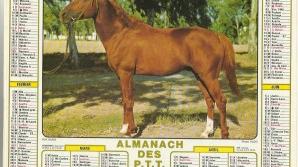 almanach-1520601724.jpg