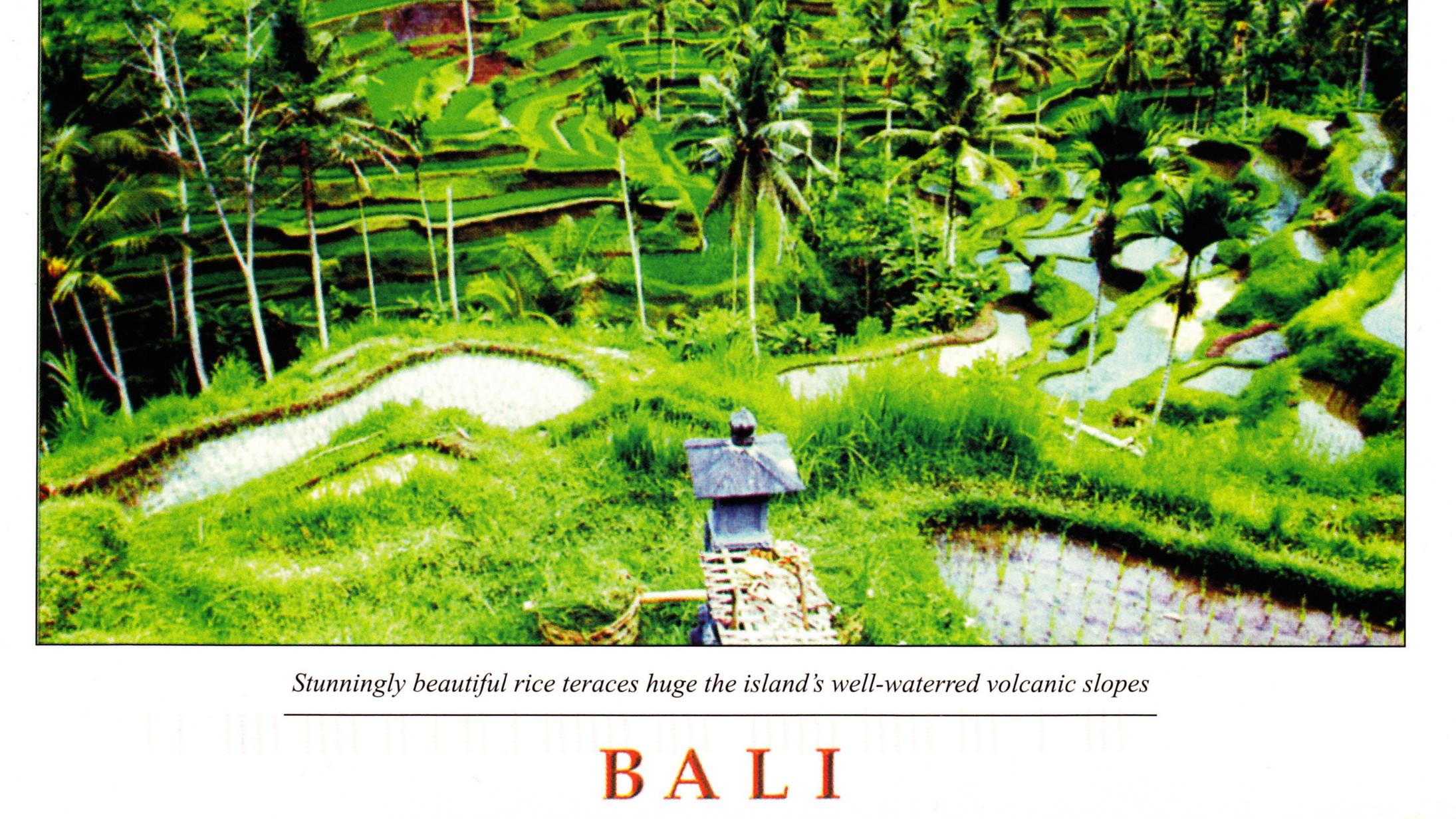 rice-terraces-in-bali-1523052249.jpg