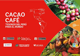 cacao_caf_-1525709608.jpg