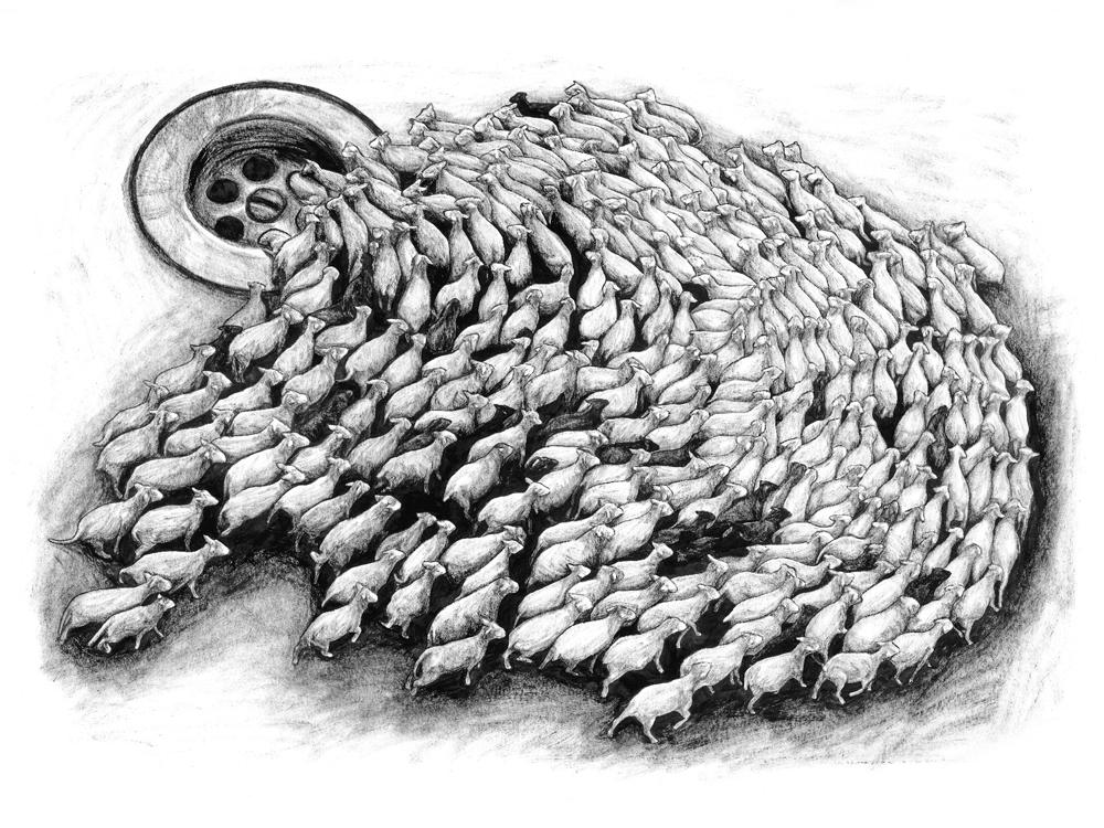 Contrepartie_320__Levalet_sheeps_60x80_33ex_1000px-1527153690.jpg