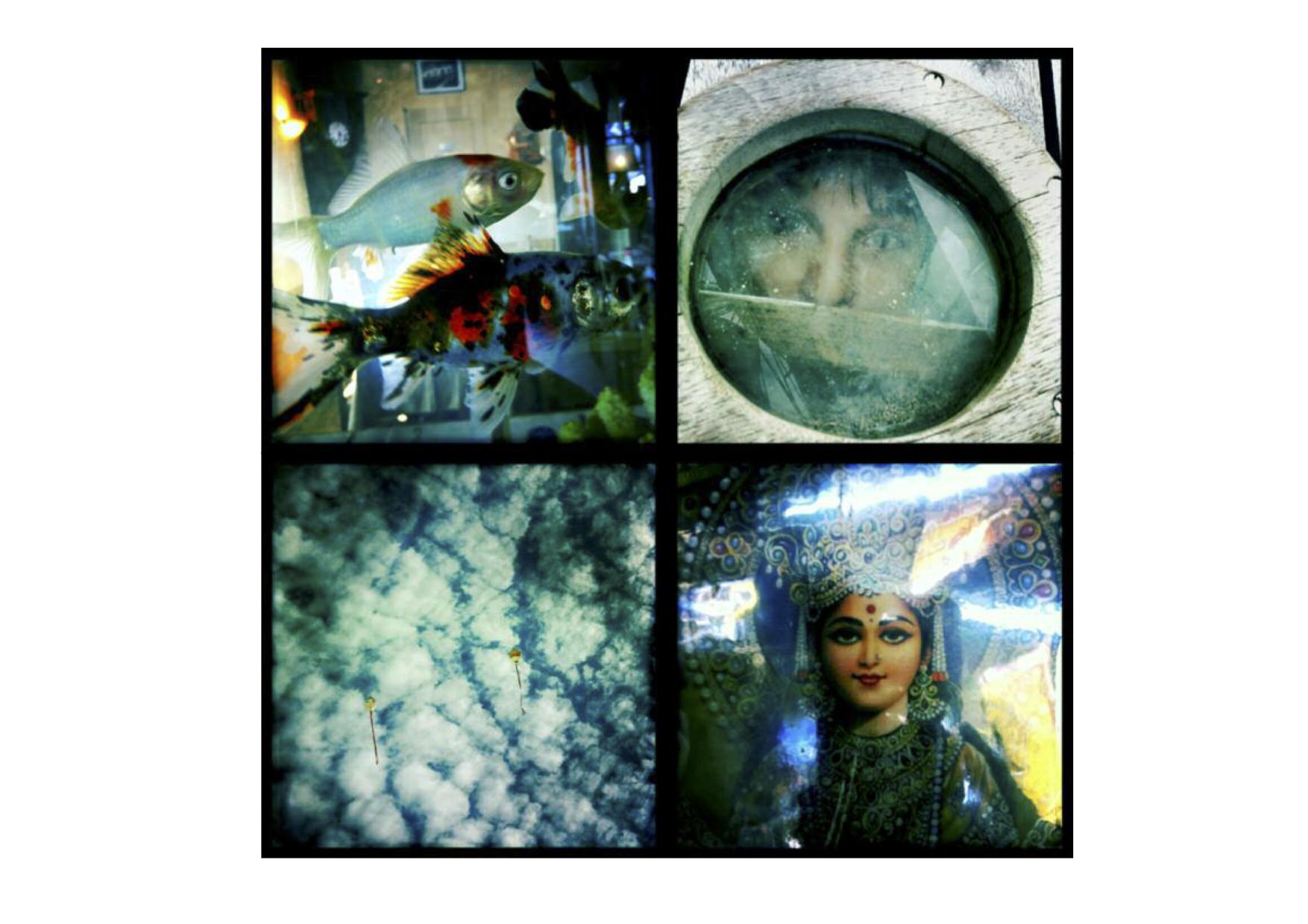flyingfishes-1527759499.jpg