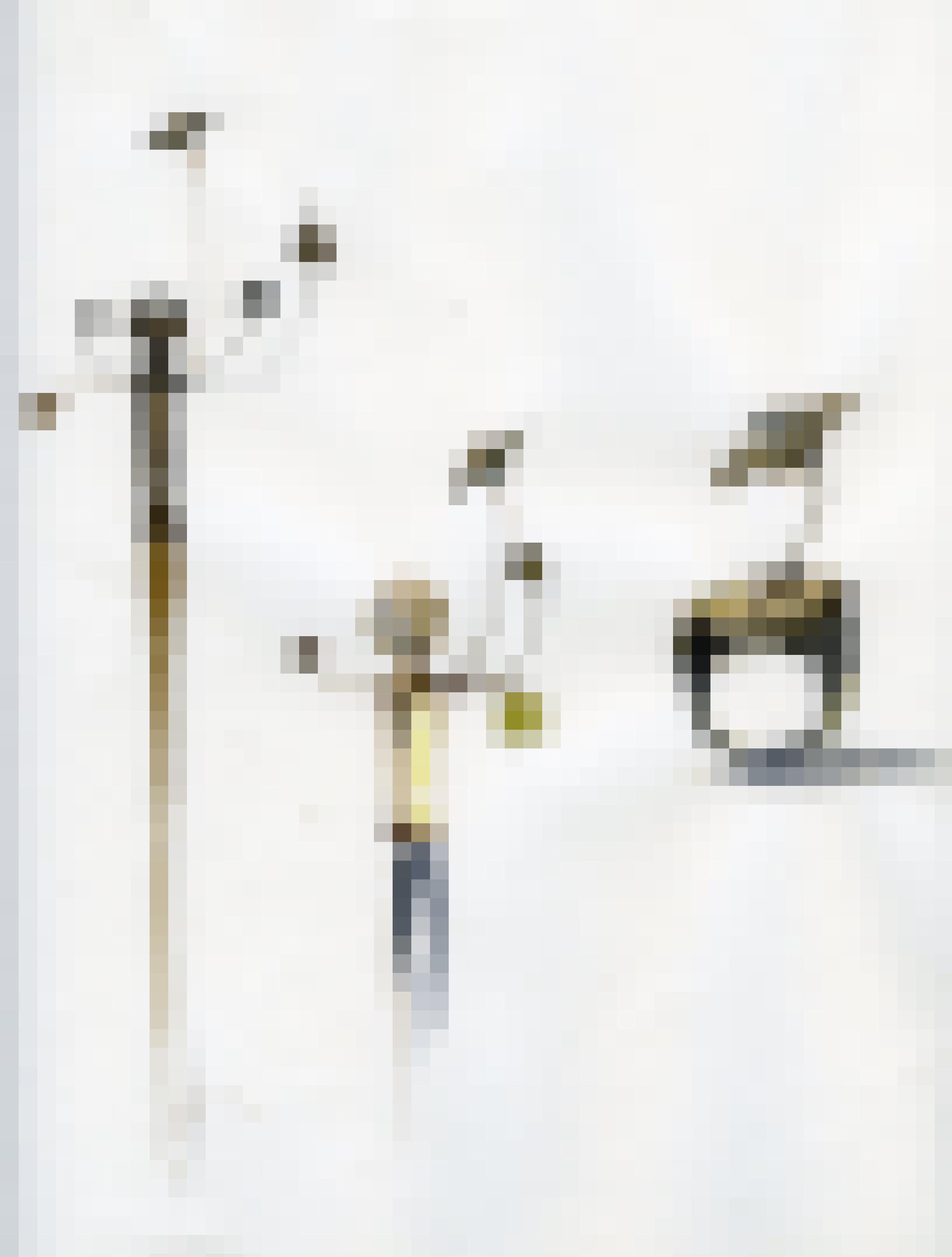 Sceptres-1527526160.jpg