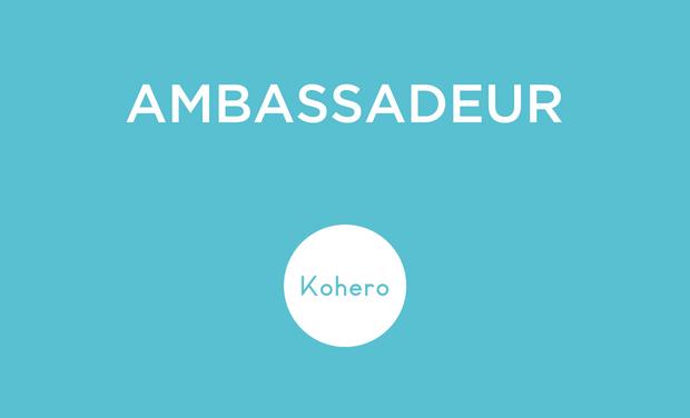 ambassadeur-1529232755.png