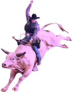rodeo-236x300-1537179027.png