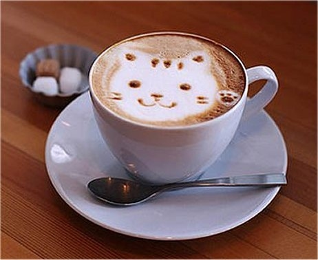Coffee_cats_5.jpg