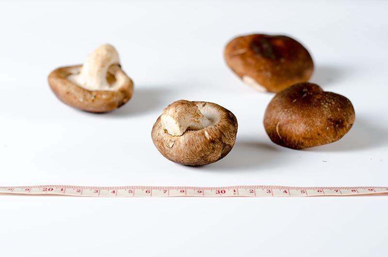 Pantry-Shiitake-Mushroom-11-1412418395.jpg