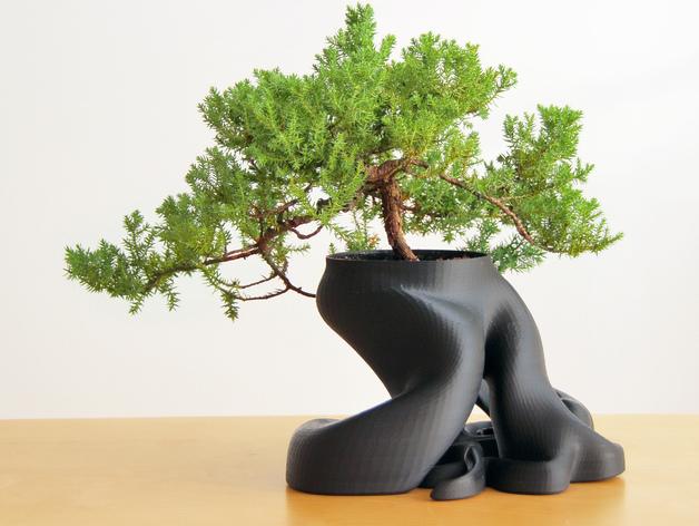 gcreate_bonsai_fullsize_preview_featured-1425420781.jpg