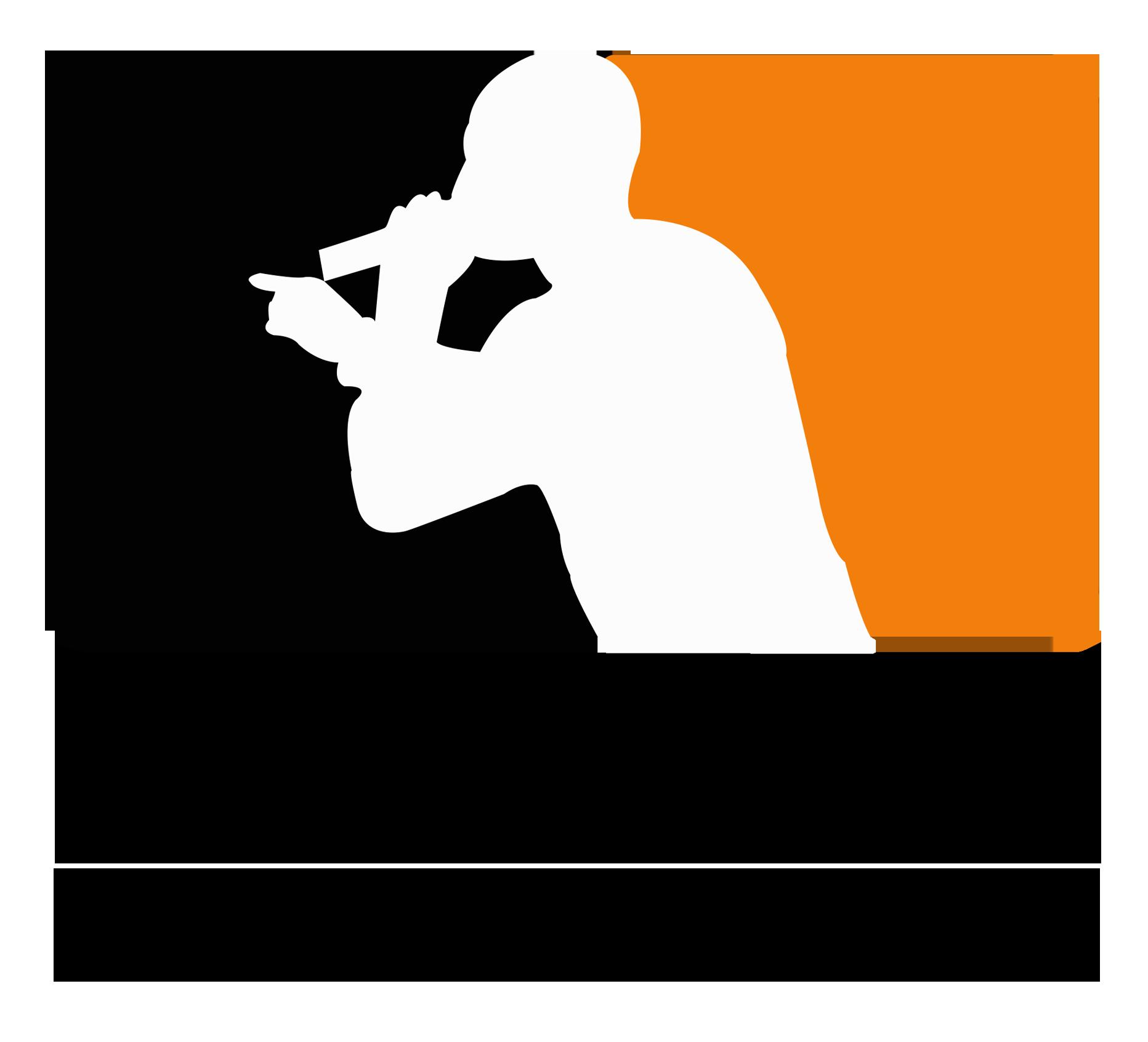 punchligue_logo-1426889026.png