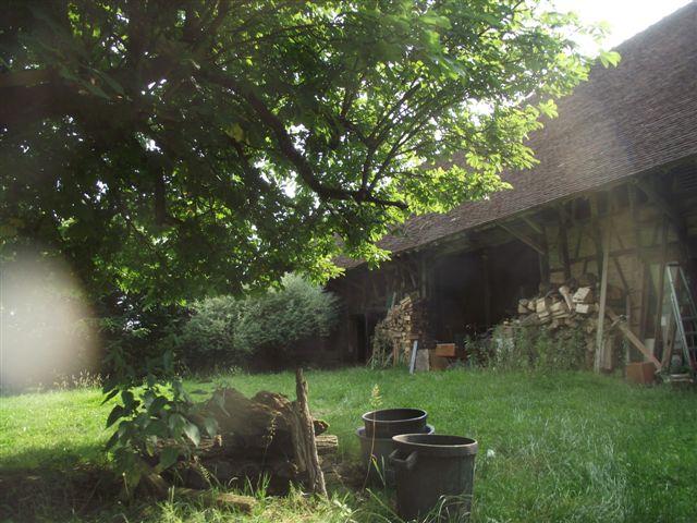 du_bois_des_arbres_et_del_ombre-1427911808.JPG