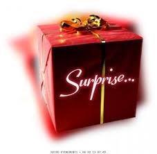 une_surprise-1433360629.jpg