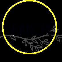 Normal logobranche hd 1485970476
