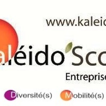 Normal logokaleido s 3   copie 2