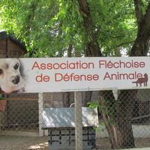 Normal_refuge_animalier_aidez_nous___garder_notre_salari__3-1495881526