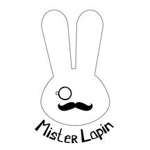 Normal_twitter_profil_mister_lapin-1497368380