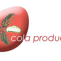 Normal_cola_pr2-1525876435