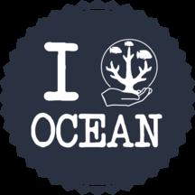 Normal_i_cg_ocean