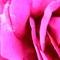 Thumb_oscar_wilde_est_mort__b-a__c7122013_3880_-_copie