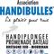 Thumb_logo_handibulles-1416325289