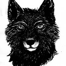 Normal_blackwolfs-1423481616