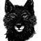 Thumb_blackwolfs-1423481616