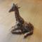 Thumb_avatar_kkbb-1461946816