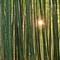 Thumb_bambou-arashiyama-16-1423152418