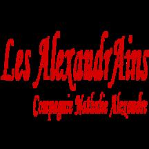 Normal logo lesalexandrains carre 1427479149