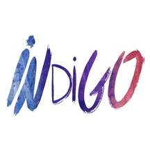 Normal logo indigo 1433543067
