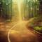 Thumb_route_avecligne_v7-1430662251