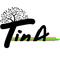 Thumb_proposition3_tina_jpeg-1430864296