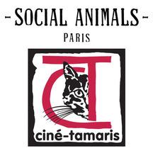 Normal logo ct   sa 1433946908