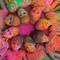 Thumb_festival-inde-1434137232