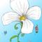 Thumb_fleurebricolefond-1454675747