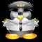 Thumb_tux_pilote_de_ligne-1457029521